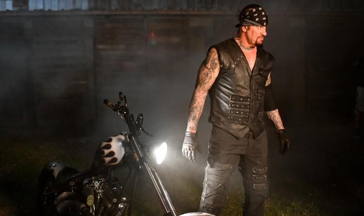undertakertaker  image