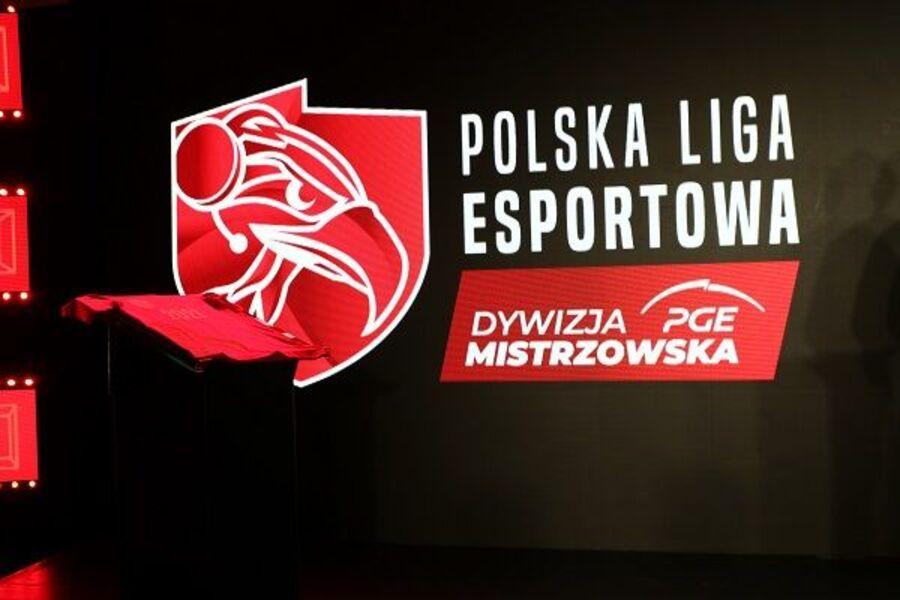 Polska Grupa Energetyczna (PGE)